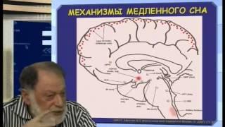 Механизмы бодрствования и сна - Ковальзон Владимир