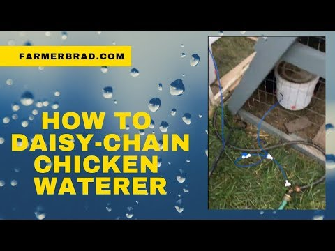 How to Easily Daisy Chain the Automatic Chicken Waterer by Farmer Brad