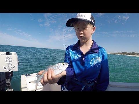 Herring Fishing Perth