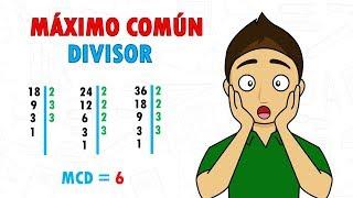 MAXIMO COMUN DIVISOR Super Facil - Para principiantes