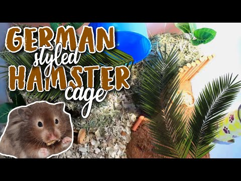 german-style-hamster-cage-tour!- -hamster-care