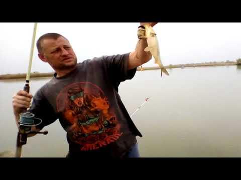Рыбалка на прудах биг -  фиш ст Ивановская.