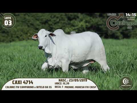 LOTE 03   CAXI 4714