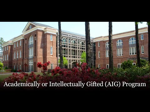 Academically or Intellectually Gifted (AIG) Program at the UNCW Watson College of Education