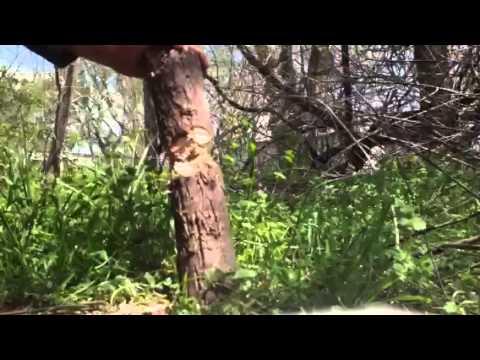 TOPS Surv-Tac 7 Joe Teti Knife Field Test-Review Part 1