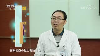 《生活提示》 20191203 网红止痛药 您了解吗?| CCTV