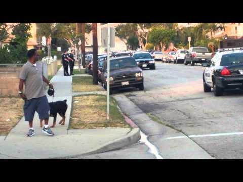 Hawthorne, Ca Police Kill Dog(1)