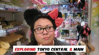 Exploring Tokyo Central & Main