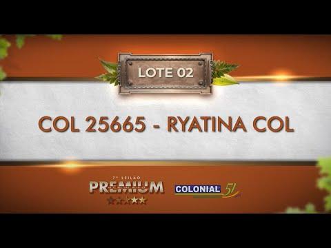 LOTE 02   COL 25665