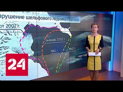 """""""Погода 24"""": Антарктида теряет ледник Ларсена"""