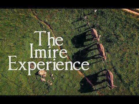 Experience Imire as a volunteer!