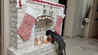 рождественский новогодний камин своими руками вместе с котом Федором! Мастер класс!