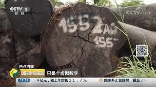 [国际财经报道]热点扫描 大火频发!亚马孙雨林背后的经济链条| CCTV财经