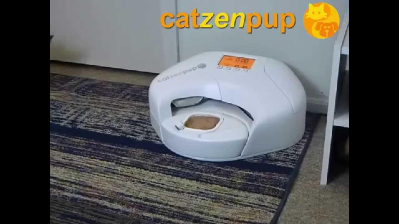 Automatic Wet Food Dog Feeder