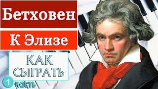 Как сыграть К Элизе на фортепиано Часть №1 (видео-урок). How to play piano Für Elise piano part №1