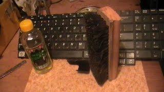 видео Как почистить клавиатуру ноутбука в домашних условиях: эффективные средства