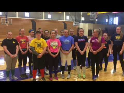 Mattawan High School Softball 2018