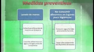 Información sobre Gastroenteritis