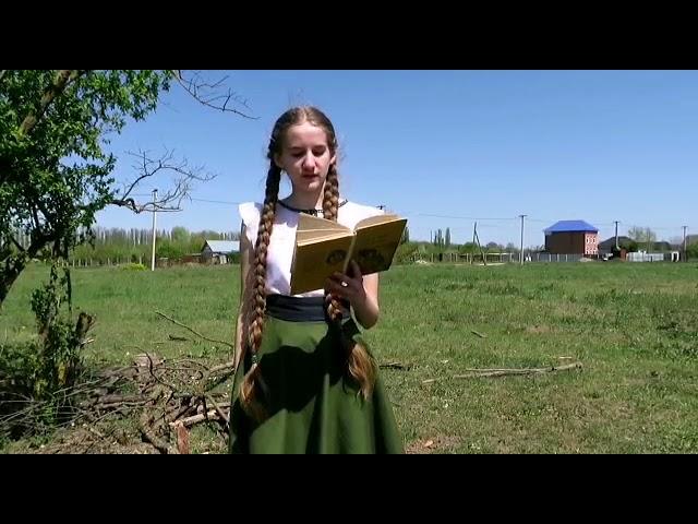 Изображение предпросмотра прочтения – ЕкатеринаИльиных читает произведение «Тарас Бульба» Н.В.Гоголя