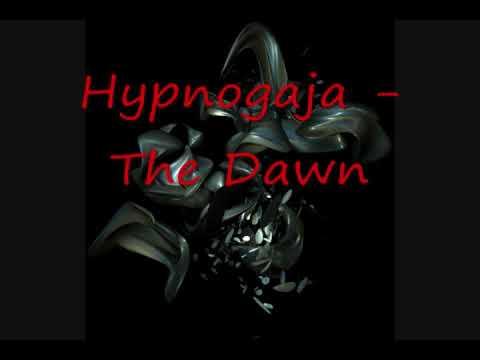 Клип Hypnogaja - The Dawn