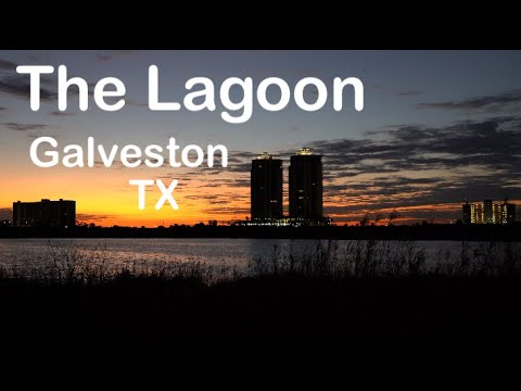 Fishing The Lagoon In Galveston TX