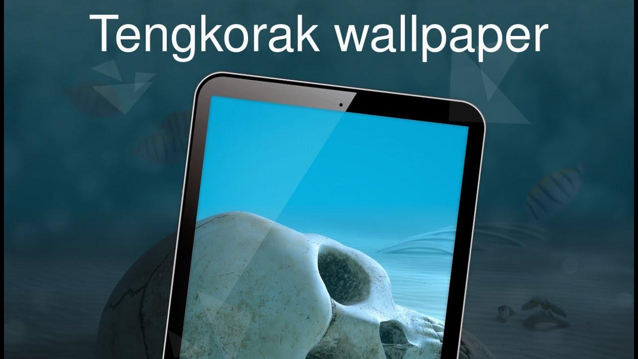 48 Wallpaper Tengkorak Hp Android HD