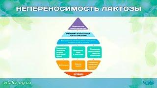 НЕПЕРЕНОСИМОСТЬ ЛАКТОЗЫ (с Анной Куркуриной)