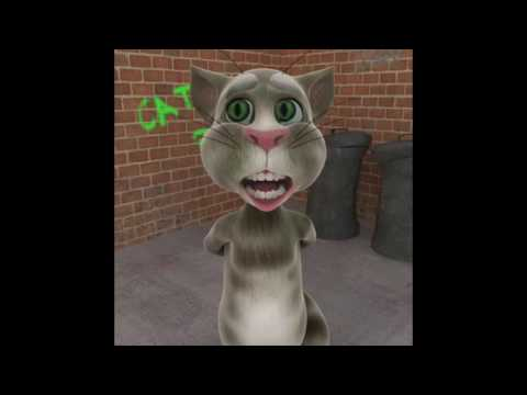 Talking Tom Sings The Scotty Sinclair Song Ahead Of The Old Firm Game