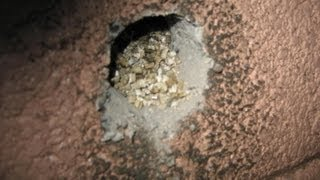 Vermiculite Insulation & Asbestos Hazards