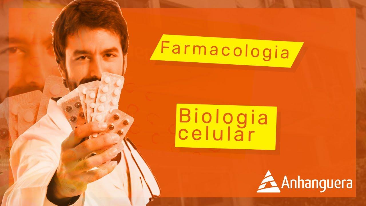Conheça as 8 principais matérias do curso de Farmácia | Blog Anhanguera