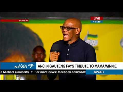 There is no perfect leader within the ANC - Magashule