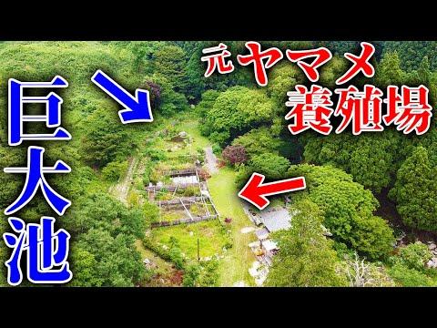 ついに東京ドーム3つ分の山購入??