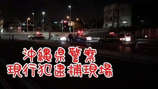沖縄県警察 現行犯逮捕の瞬間