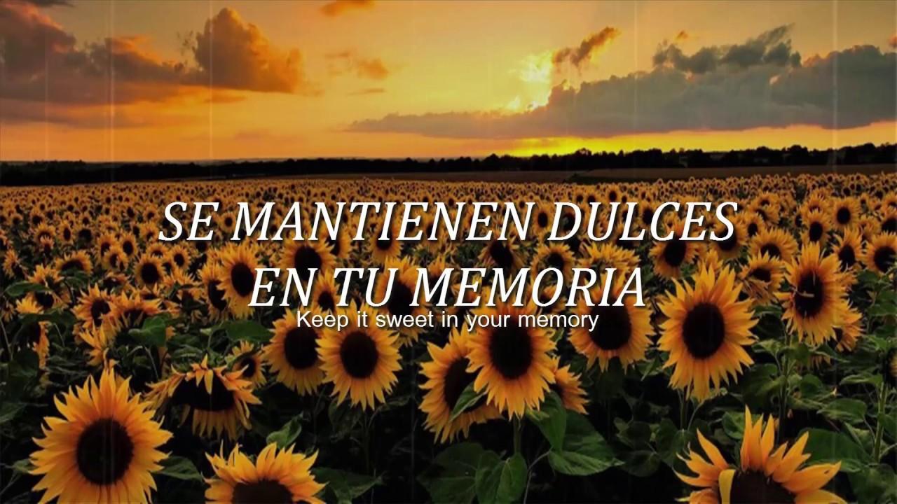 Harry Styles - Sunflower, Vol. 6 / Sub español-Lyrics ...