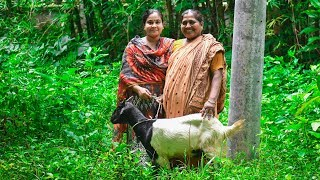 Village Cooking: Full Goat/Mutton Curry Cooking Recipe for Kids by Village Food Life