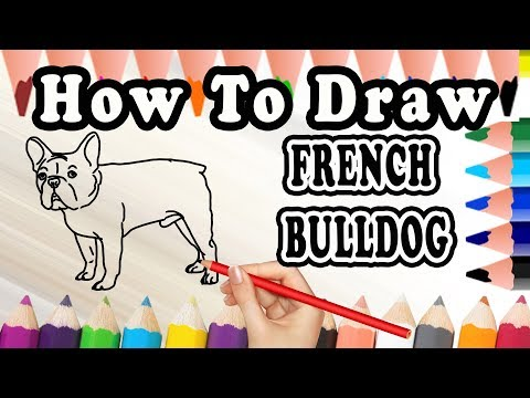 How To Draw A French Bulldog DOG | Drawing Step By Step French Bulldog Dog | Draw Easy For Kids