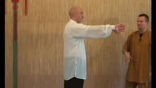 Qi Gong Yi Jin Jing Exercices demonstration