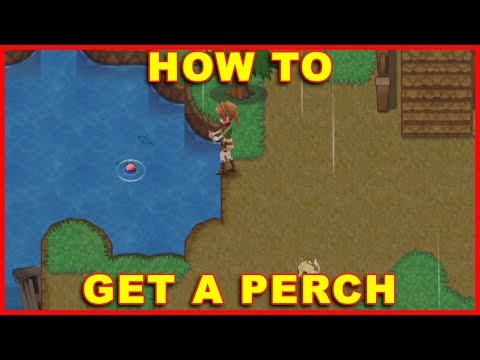 Harvest Moon Light Of Hope: How To Get A Perch (Fish)