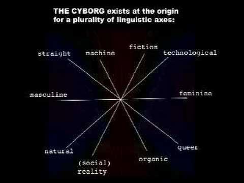 "Haraway's ""Cyborg Manifesto"""