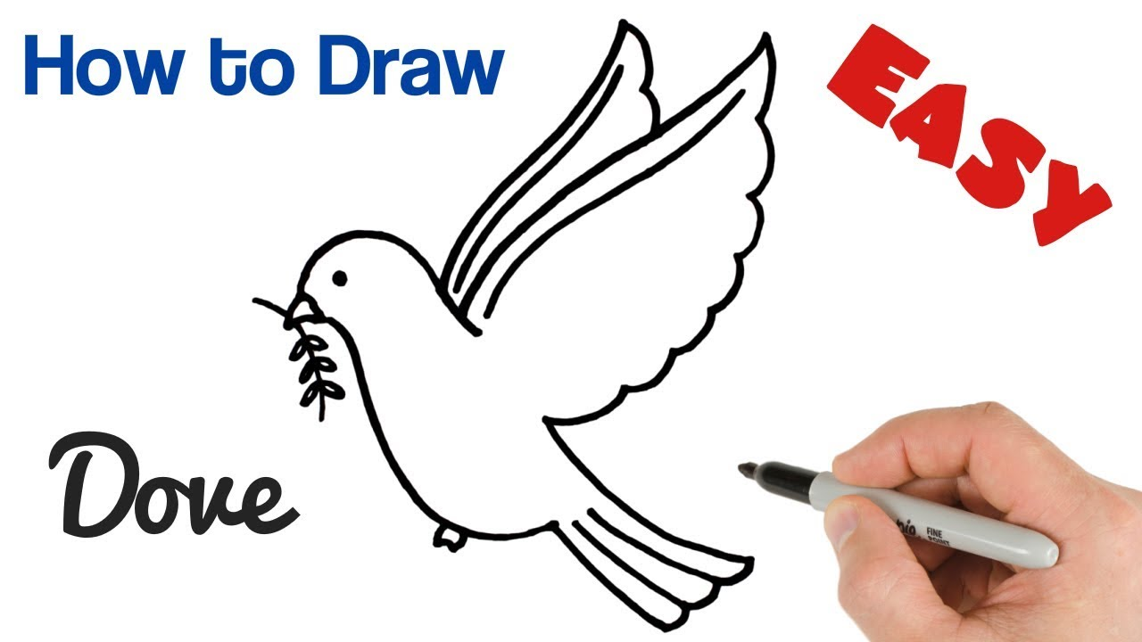 How To Draw A Dove With Olive Branch Pigeon Drawing Easy Art