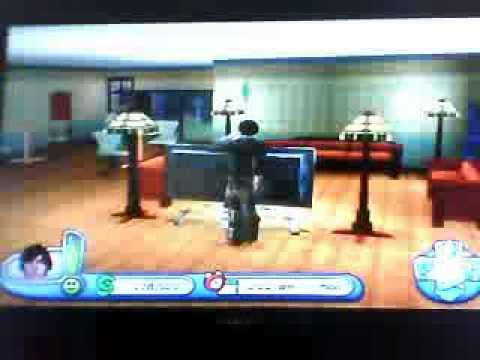 Sims 2 ps2 cheats heiraten