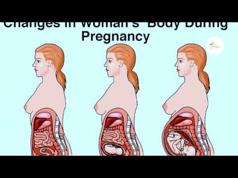 Sex in pregnancy is generally safe