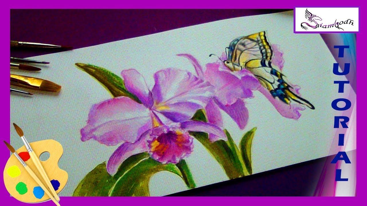 Orquideas y Mariposa Dibujo Tutorial Como Pintar Flores en Acuarela ...