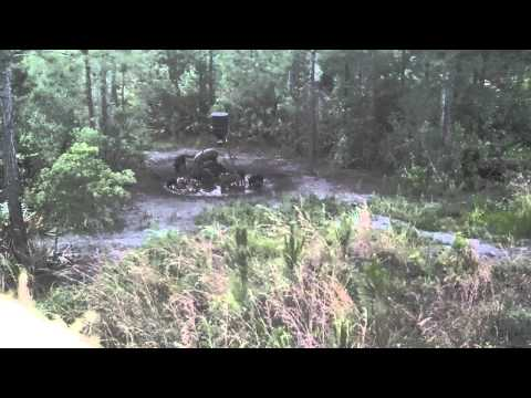 Wild Boar hunting in Florida w/ West Shore Outfitters