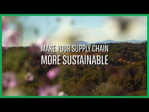 Make your supply chain more sustainable