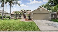 Lutz Home For Sale - 22852 Sterling Manor Drive, Lutz, Florida