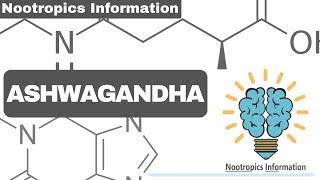 Ashwagandha - Nootropics Information