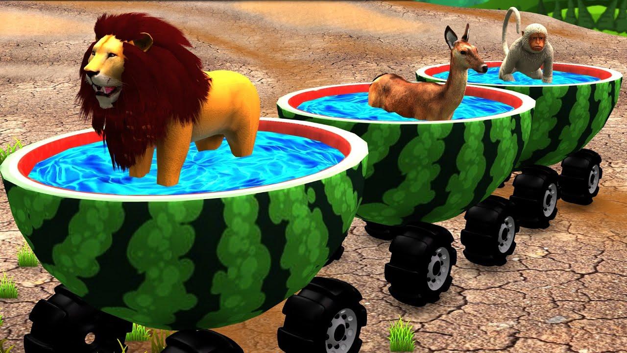 पशु तरबूज स्विमिंग पूल ट्रेन Animals Watermelon Swimming Pool Train Hindi Kahaniya हिंदी कहनिया