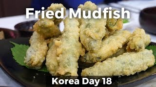 Eating Crispy Mudfish in Namwon, South Korea (Day 18)