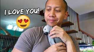 When My Bird Asks to be Cuddled   Vlog #272 thumbnail